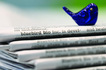bluebird charm sitting on top of a stack of newspapers